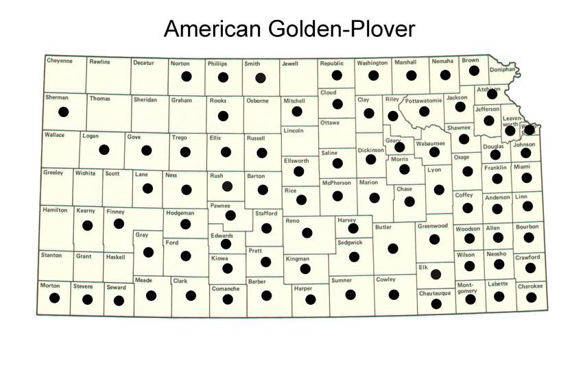 American golden plover migration map